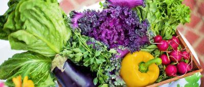 Bojujte proti akné stravou