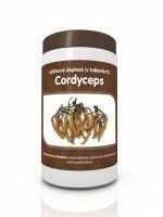 Cordyceps sinesis mycelium 100 tabliet 500mg