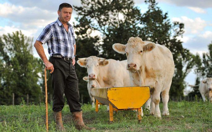 Farmár na poli so zvieratami